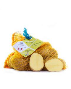 Knödelkartoffel